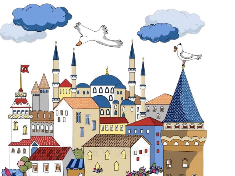 Istanbul Cultural Ambassadors Project